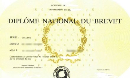 Image illustrant l'article diplome-brevet-1024x683 de Clio Collège