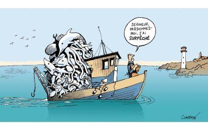 Image illustrant l'article image menaces bateau de Clio Collège
