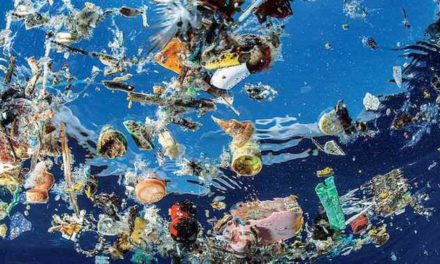 Image illustrant l'article the-amount-of-plastic-in-oceans-will-triple-within-seven-years-says-major-report de Clio Collège