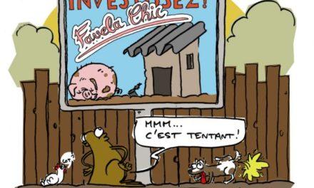 Image illustrant l'article LeCrapaud_fiess-jacquette-bidonville-favella-web-660x655 de Clio Collège