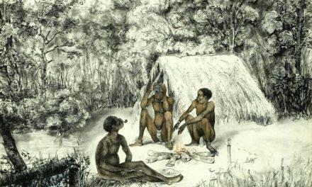 Image illustrant l'article Trois nègres marrons à Surinam de Clio Collège