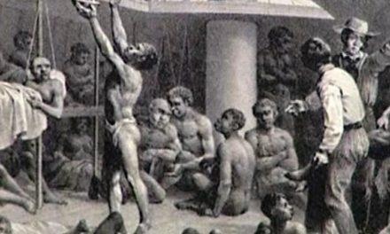 Image illustrant l'article 18086519.png de Clio Collège