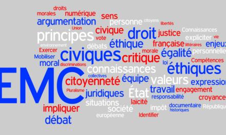Image illustrant l'article EMC-wordle-1 de Clio Collège