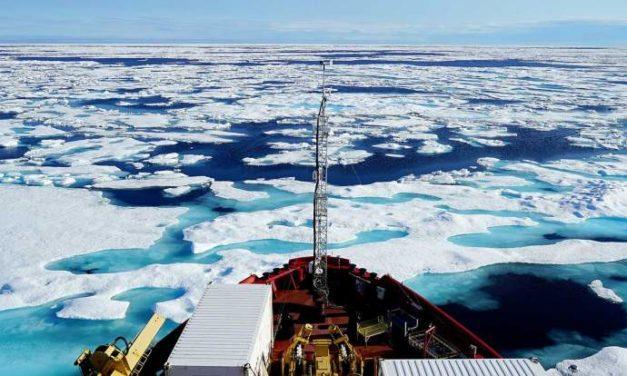 Quatrième – Activité sur l'Arctique