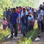 Chapitre 1 – Un monde de migrants